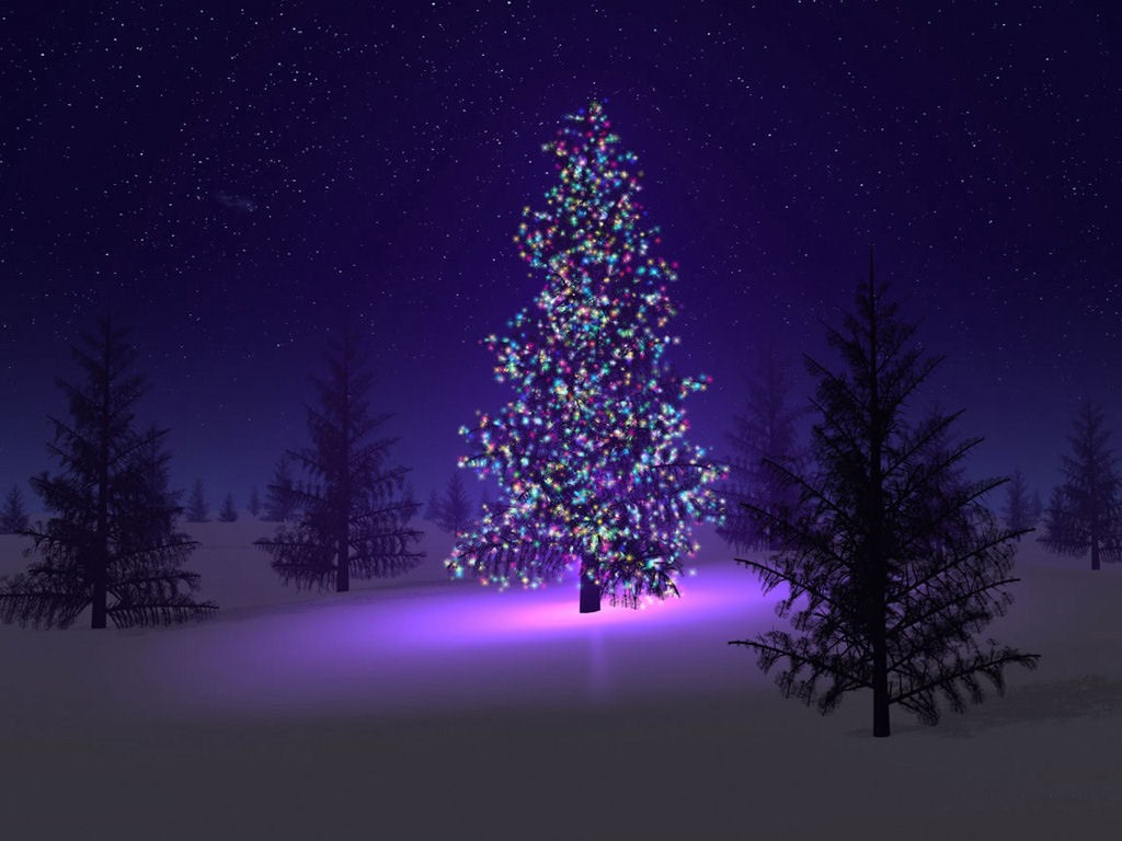 beautiful-christmas-tree-source_bp8